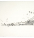 Woodlouse Study (ii) - Graphite and Pencil on Paper - 63cm x 47cm - 2010