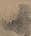 F34 - Graphite and Watercolour on Sandpaper - 14cm x 14cm - 2007