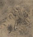 F40 - Graphite and Watercolour on Sandpaper - 14cm x 14cm - 2007